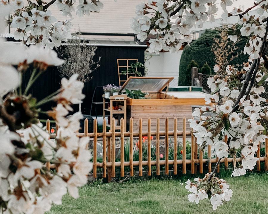 Modern Cottage Garden, Küchengarten, Kitchen garden, Blumengarten, Gemüsegarten